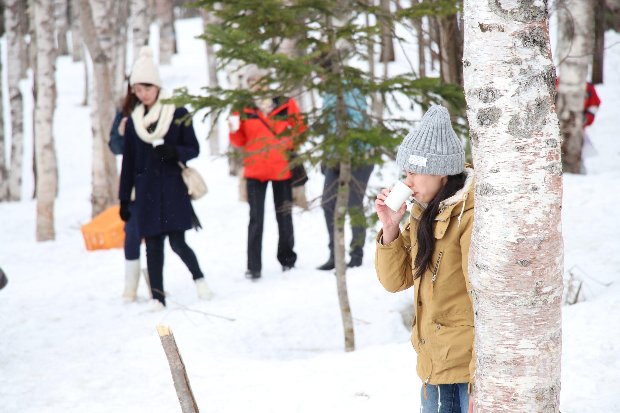 第25回美深白樺樹液春まつり白樺サミット2020【中止】