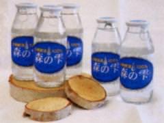 白樺樹液「森の雫」